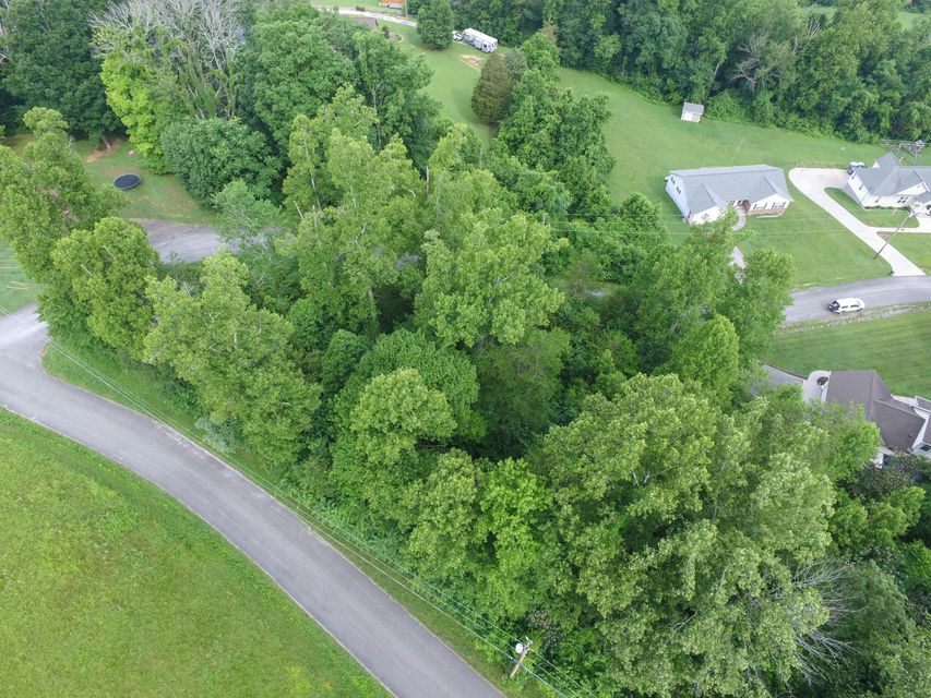 Additional photo for property listing at John Hendren Lane John Hendren Lane Clinton, 田纳西州 37716 美国