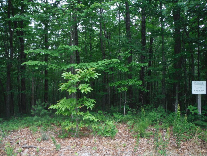Additional photo for property listing at Rome Crest Rome Crest Jamestown, Tennessee 38556 Estados Unidos