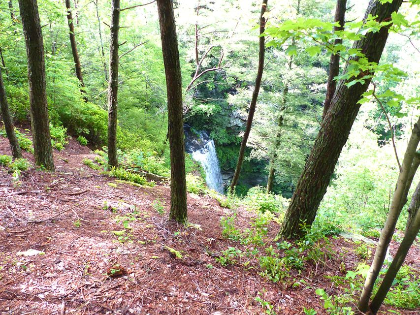 Land for Sale at 2043 Timberwood Trace Monteagle, Tennessee 37356 United States