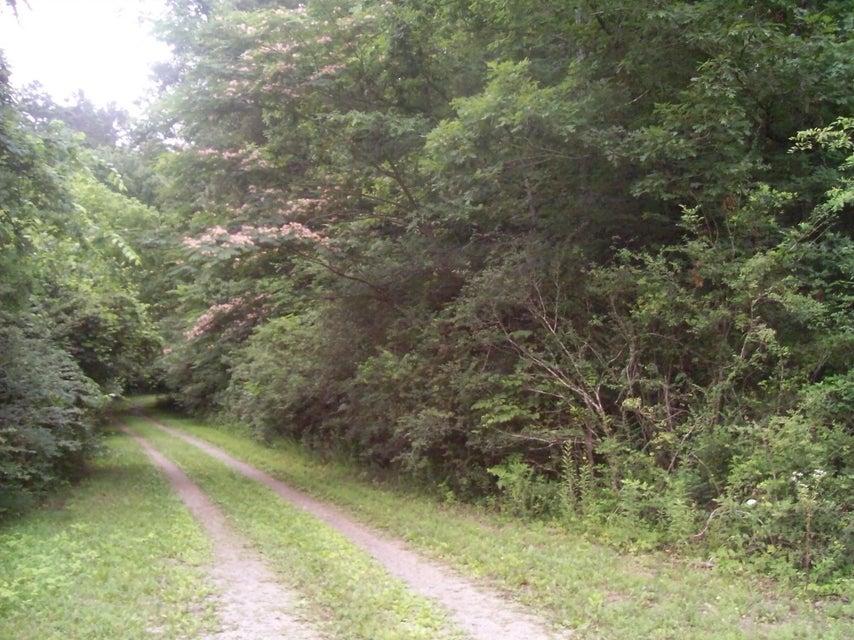 Земля для того Продажа на 150 Bedlow Way 150 Bedlow Way Loudon, Теннесси 37774 Соединенные Штаты