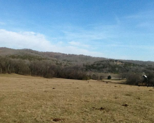 Land for Sale at 16218 Martin Creek Road Granville, Tennessee 38564 United States