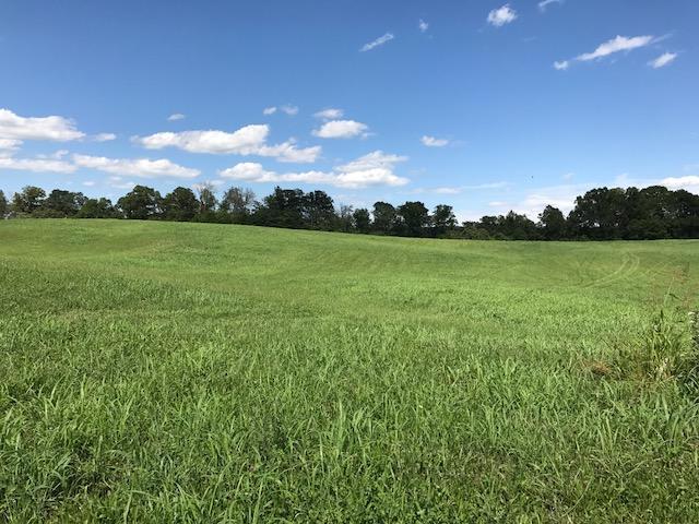 Terrain pour l Vente à Holston Acres Drive Holston Acres Drive Rutledge, Tennessee 37861 États-Unis