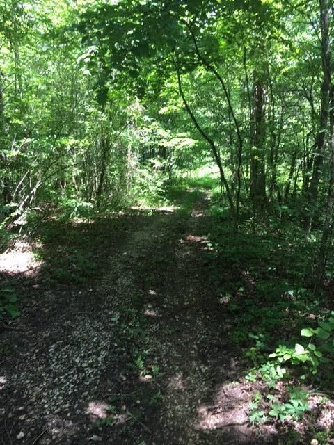 Additional photo for property listing at 349 Smithfield Road 349 Smithfield Road Tellico Plains, Теннесси 37385 Соединенные Штаты