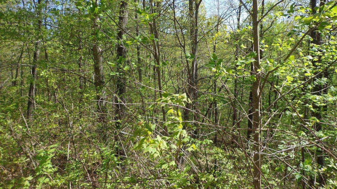Additional photo for property listing at Lot 78-Norris Shores Drive Lot 78-Norris Shores Drive Sharps Chapel, Tennessee 37866 United States