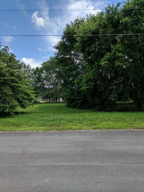 土地 为 销售 在 Chapman Overlook Drive Chapman Overlook Drive 西摩, 田纳西州 37865 美国
