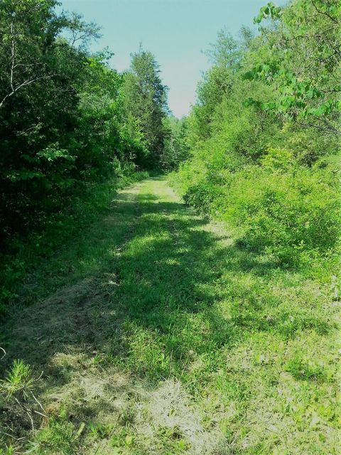 Land for Sale at Wolfenbarger Road Luttrell, Tennessee 37779 United States