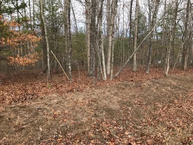 Land for Sale at 43 Meadowood Lane 43 Meadowood Lane Crossville, Tennessee 38558 United States