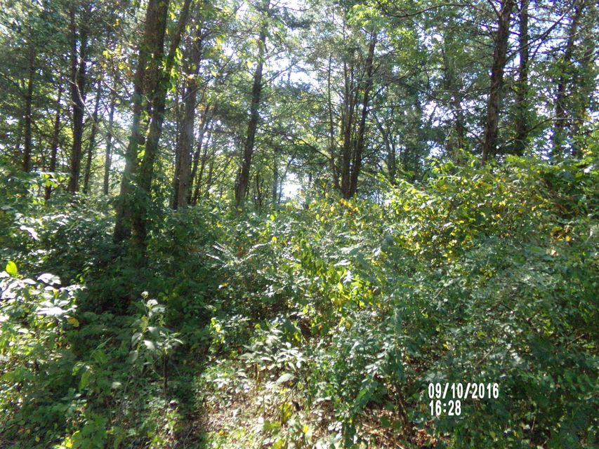 Lakefront lot for sale at Overlook Bay