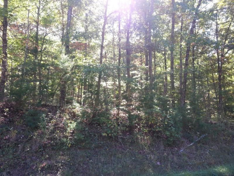 Land for Sale at Homestead Road Madisonville, Tennessee 37354 United States