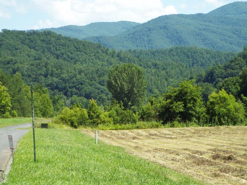 Земля для того Продажа на Lot 19 River Rapids Way Lot 19 River Rapids Way Newport, Теннесси 37821 Соединенные Штаты