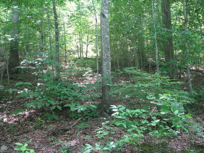 Great lot with views of year round water