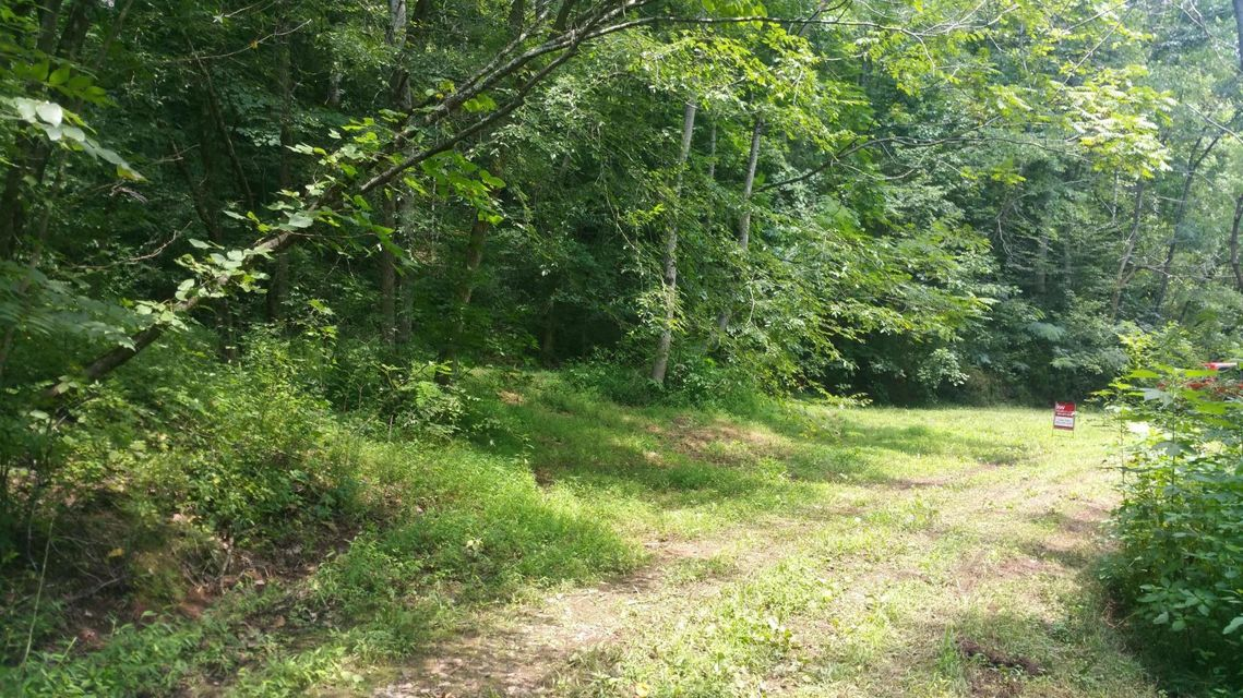 Additional photo for property listing at Big Springs Road Road Big Springs Road Road Friendsville, Tennessee 37737 Estados Unidos