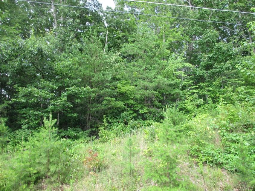 Земля для того Продажа на 664 Catoosa Blvd 664 Catoosa Blvd Crossville, Теннесси 38558 Соединенные Штаты