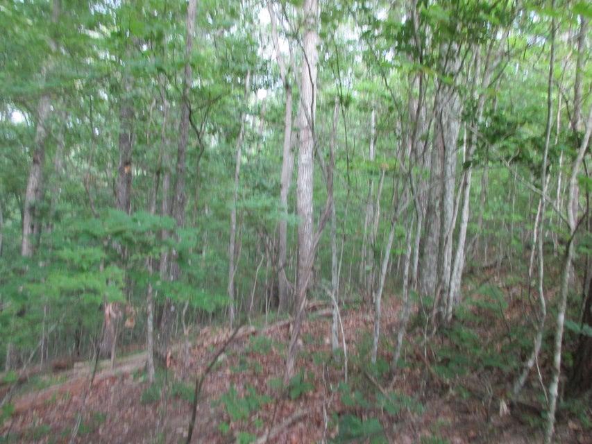 Additional photo for property listing at 664 Catoosa Blvd 664 Catoosa Blvd Crossville, Теннесси 38558 Соединенные Штаты