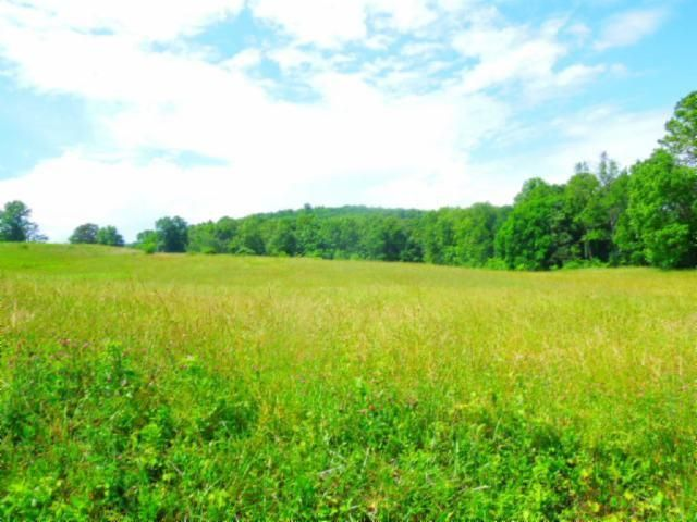 Land for Sale at Reeder Town Road Road Byrdstown, Tennessee 38549 United States