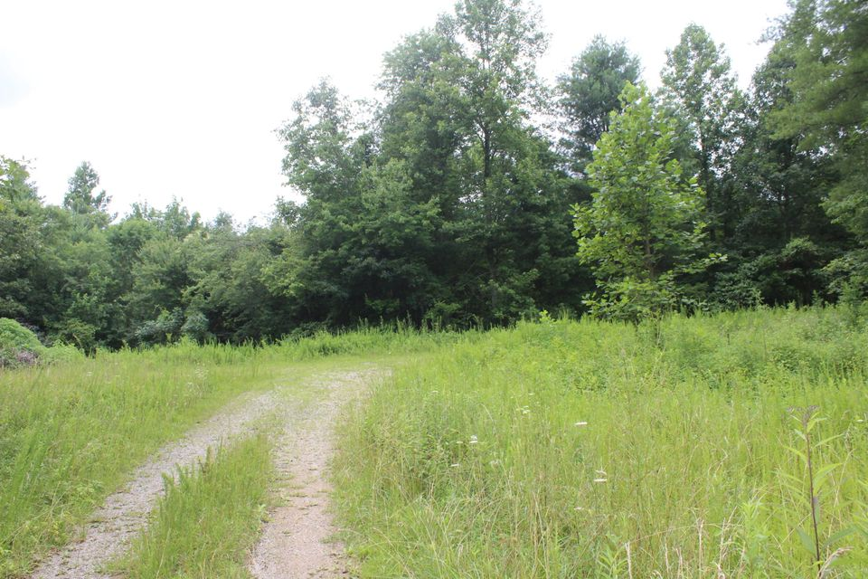 Additional photo for property listing at Mt Helen Road Mt Helen Road Allardt, Tennessee 38504 United States