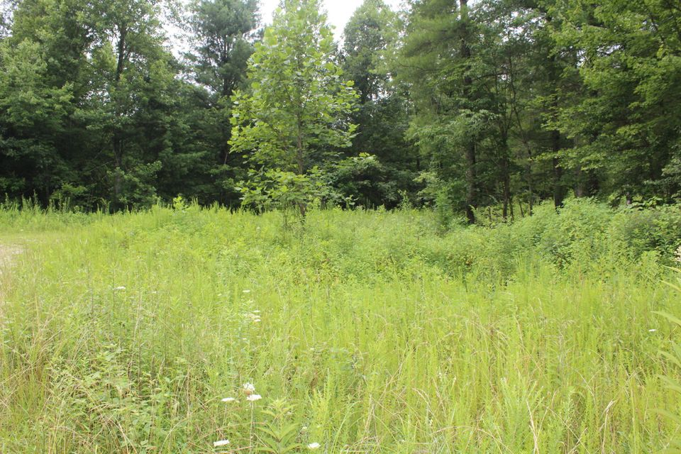 Land for Sale at Mt Helen Road Mt Helen Road Allardt, Tennessee 38504 United States