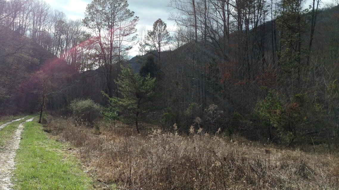 土地 为 销售 在 Dry Gap Road Surgoinsville, 田纳西州 37873 美国