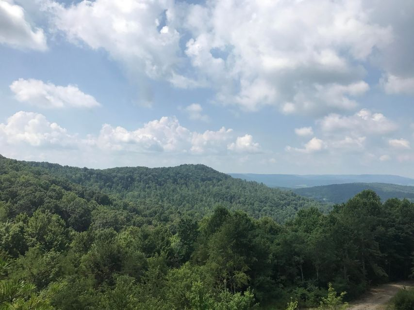 Land for Sale at Wes Goodman Pall Mall, Tennessee 38577 United States