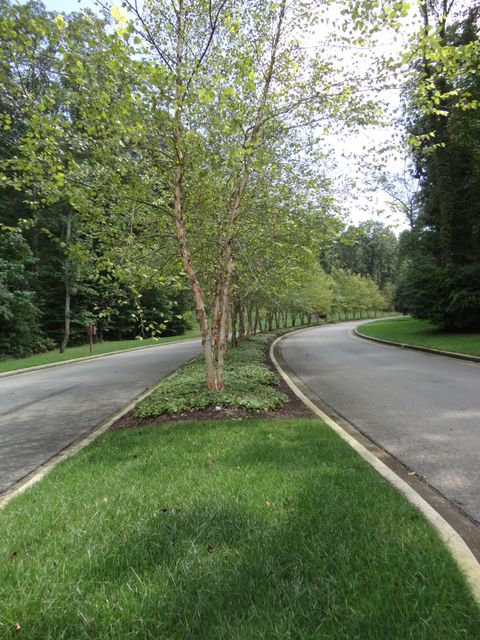 Additional photo for property listing at 19995 Tennessee National Drive 19995 Tennessee National Drive Loudon, Теннесси 37774 Соединенные Штаты