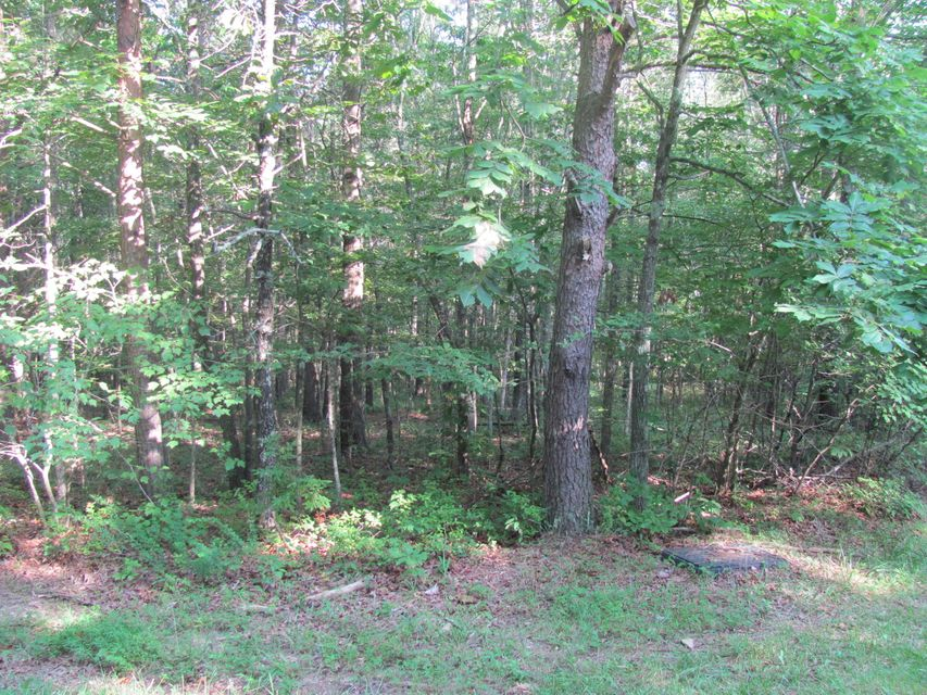 Land for Sale at 34 Andover Lane 34 Andover Lane Fairfield Glade, Tennessee 38558 United States