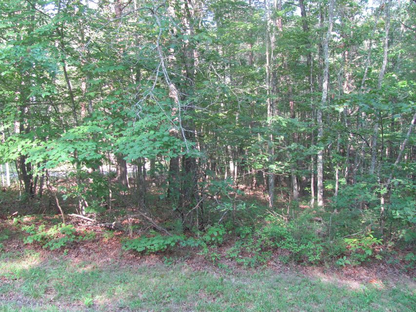 Additional photo for property listing at 34 Andover Lane 34 Andover Lane Fairfield Glade, Tennessee 38558 United States