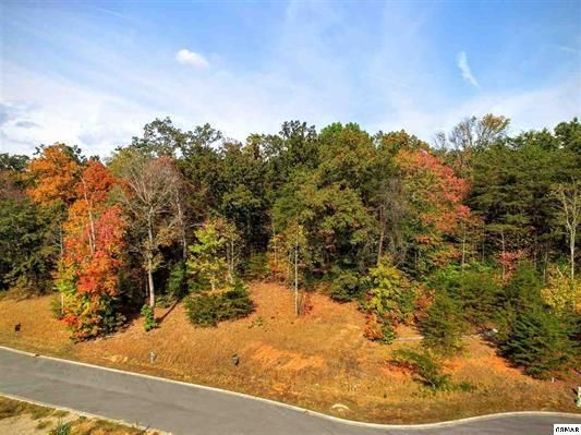 Terrain pour l Vente à Lot 66 Sierra Lane Way Lot 66 Sierra Lane Way Sevierville, Tennessee 37876 États-Unis