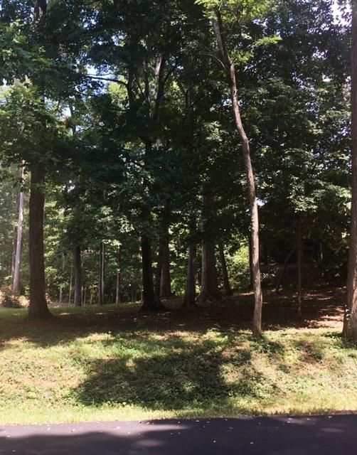 Land for Sale at 418 Tigitsi Circle Loudon, Tennessee 37774 United States