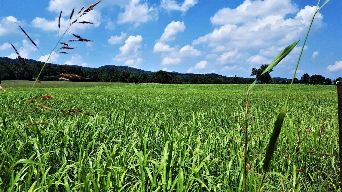 Terrain pour l Vente à Taylor Road Taylor Road Rutledge, Tennessee 37861 États-Unis