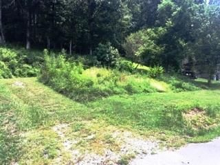 Land for Sale at 379 Mudd Street Helenwood, Tennessee 37755 United States