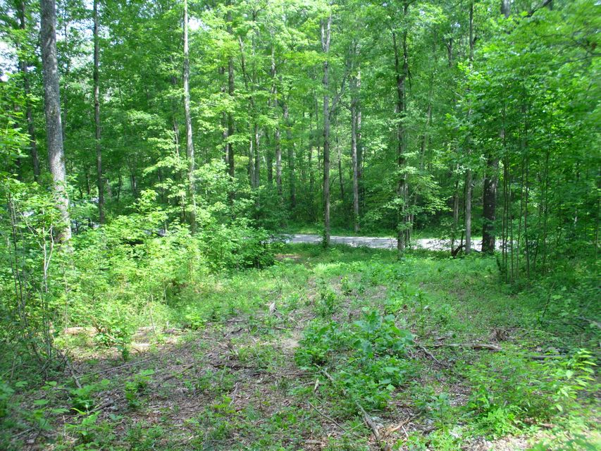 Land for Sale at 5296 Honey Creek Loop Robbins, Tennessee 37852 United States
