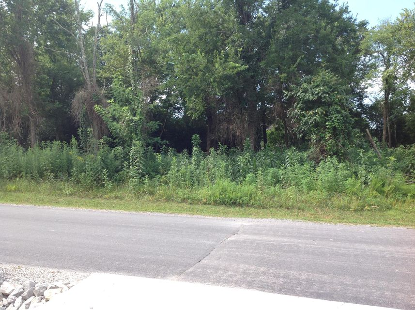 Земля для того Продажа на 206 Tecumseh Way 206 Tecumseh Way Loudon, Теннесси 37774 Соединенные Штаты