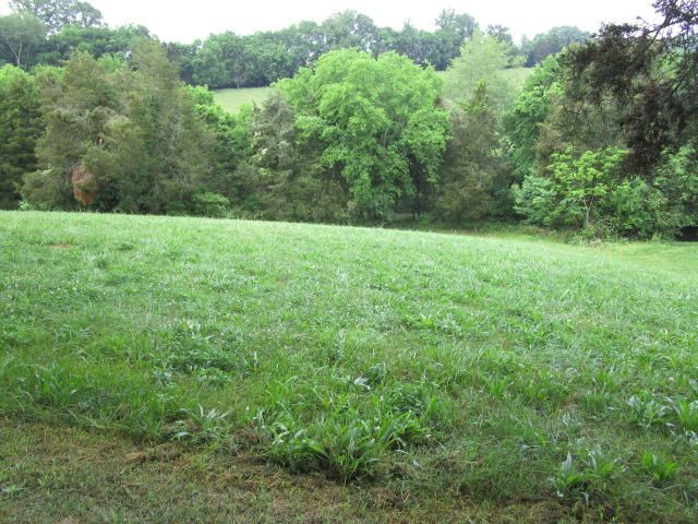 Terreno por un Venta en Perrin Hollow Road Perrin Hollow Road Blaine, Tennessee 37709 Estados Unidos