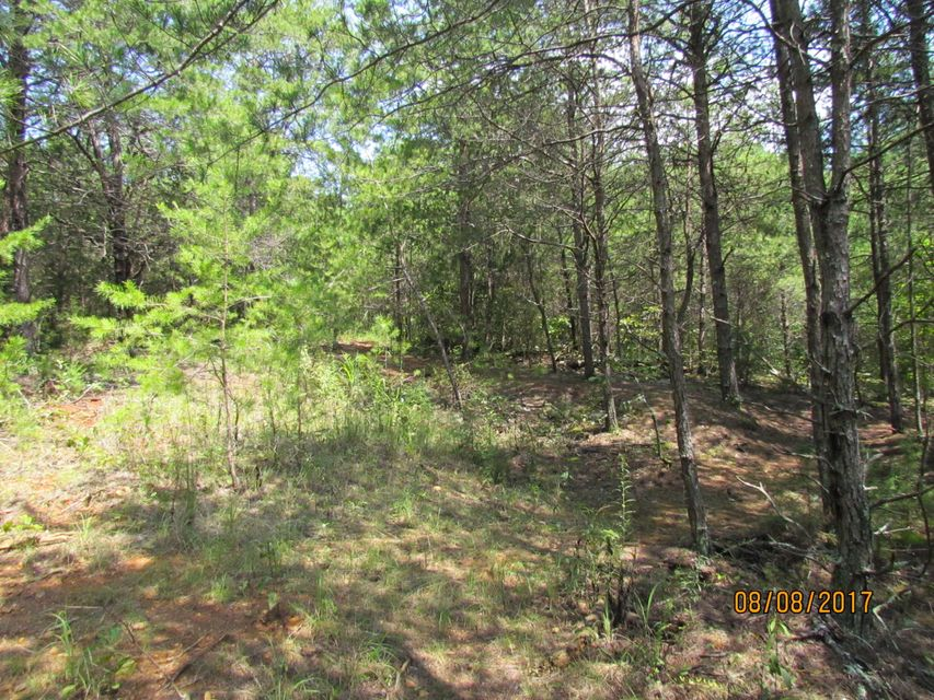 Additional photo for property listing at Little Dogwood Little Dogwood Kingston, Tennessee 37763 United States