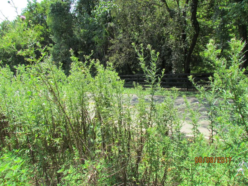 Additional photo for property listing at Little Dogwood Little Dogwood Kingston, Tennessee 37763 Estados Unidos