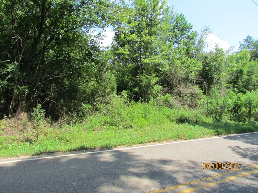 Land for Sale at Little Dogwood Little Dogwood Kingston, Tennessee 37763 United States