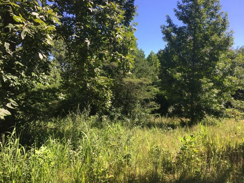 Additional photo for property listing at Foust Cemetery Road Foust Cemetery Road Lake City, 田纳西州 37769 美国