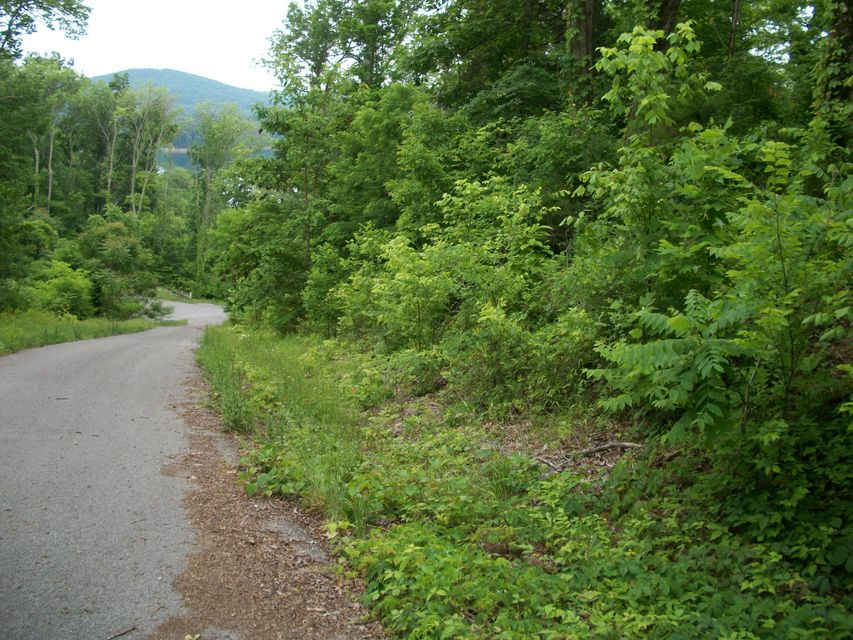 Terrain pour l Vente à Lot 267 Lakeview Drive Lot 267 Lakeview Drive Sharps Chapel, Tennessee 37866 États-Unis