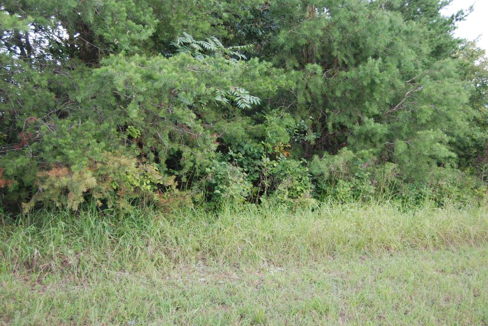 Land for Sale at Edata Trail Edata Trail Monroe, Tennessee 38573 United States