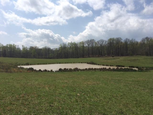Земля для того Продажа на Griffintown Road Griffintown Road Sparta, Теннесси 38583 Соединенные Штаты