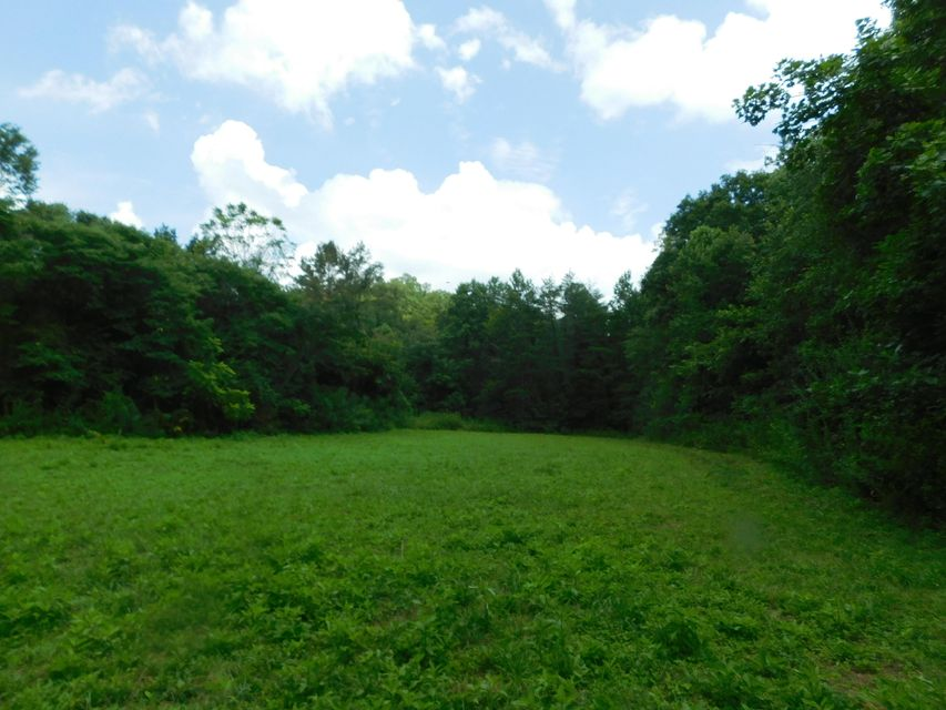 Land for Sale at Brimstone Road Robbins, Tennessee 37852 United States