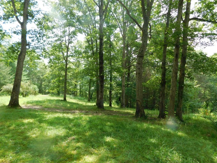 Land for Sale at 6402 Brimstone Road Robbins, Tennessee 37852 United States