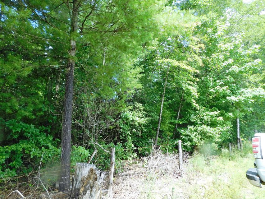 Additional photo for property listing at Highway 27 Highway 27 Winfield, Tennessee 37892 États-Unis