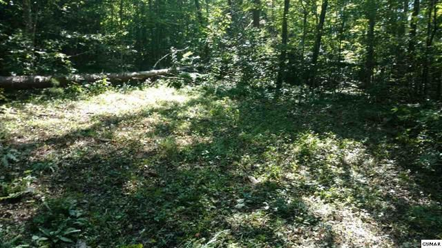 Additional photo for property listing at Highway 107 N. Highway 107 N. Del Rio, Tennessee 37727 Estados Unidos