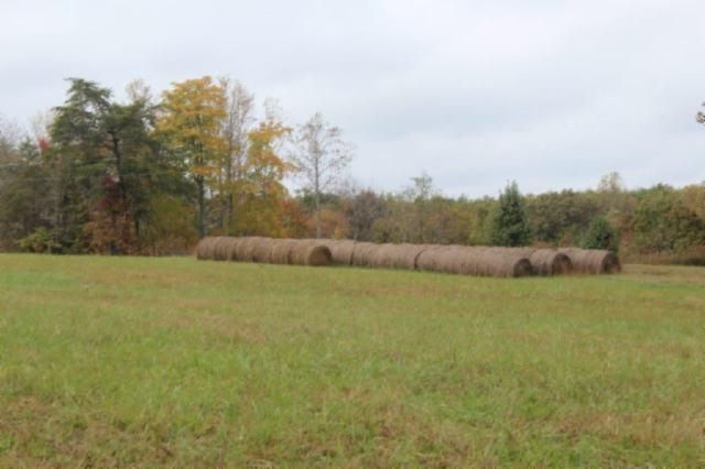 Terrain pour l Vente à 46.76 Pages Lane Smithville, Tennessee 37166 États-Unis