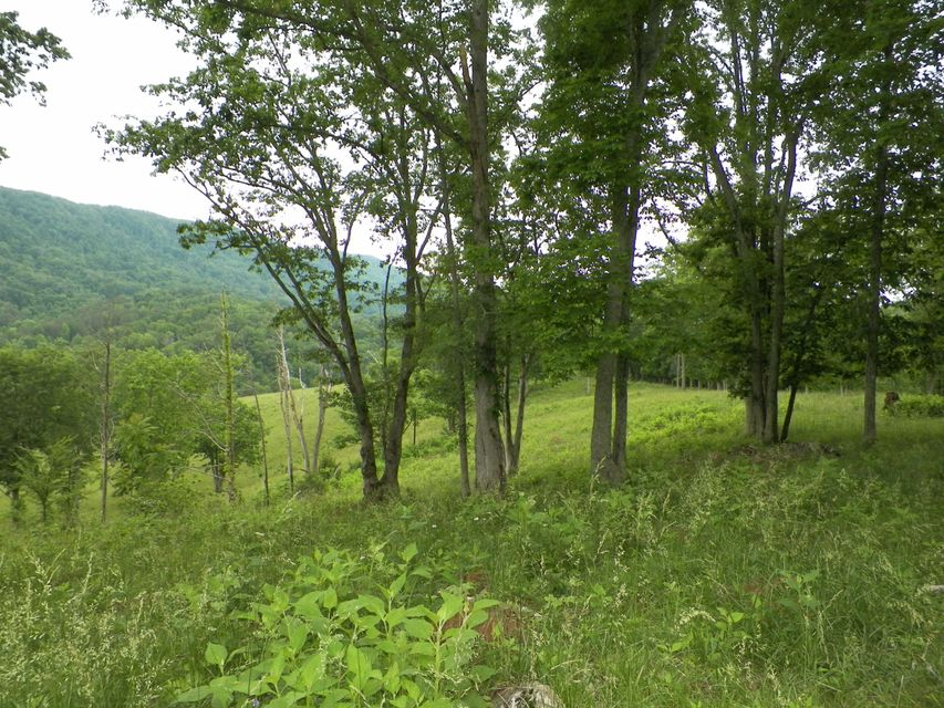 Land for Sale at Mountain Valley Hwy 131 Mountain Valley Hwy 131 Thorn Hill, Tennessee 37881 United States