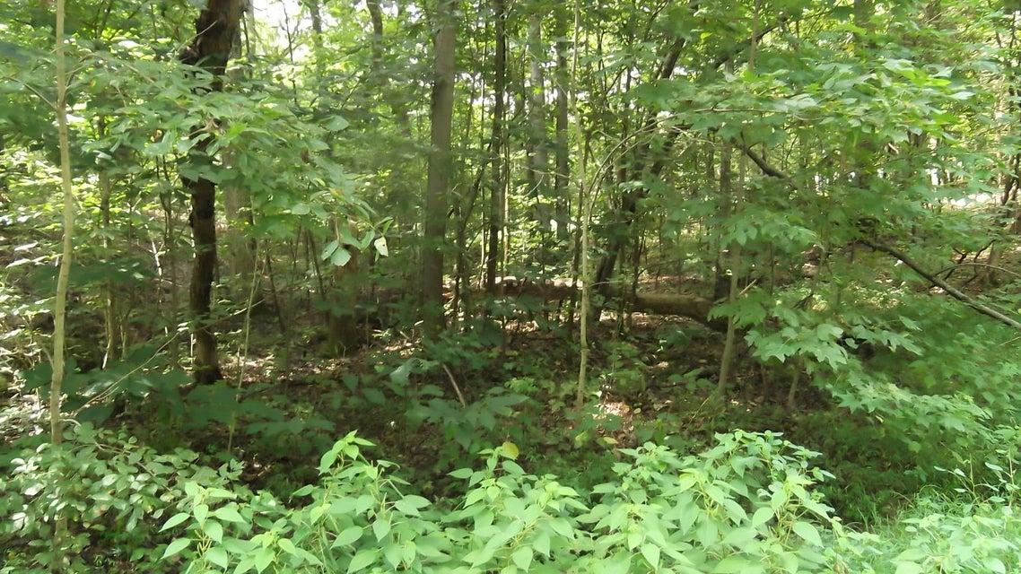 Terreno por un Venta en Deer Creek Tr Deer Creek Tr Baneberry, Tennessee 37890 Estados Unidos