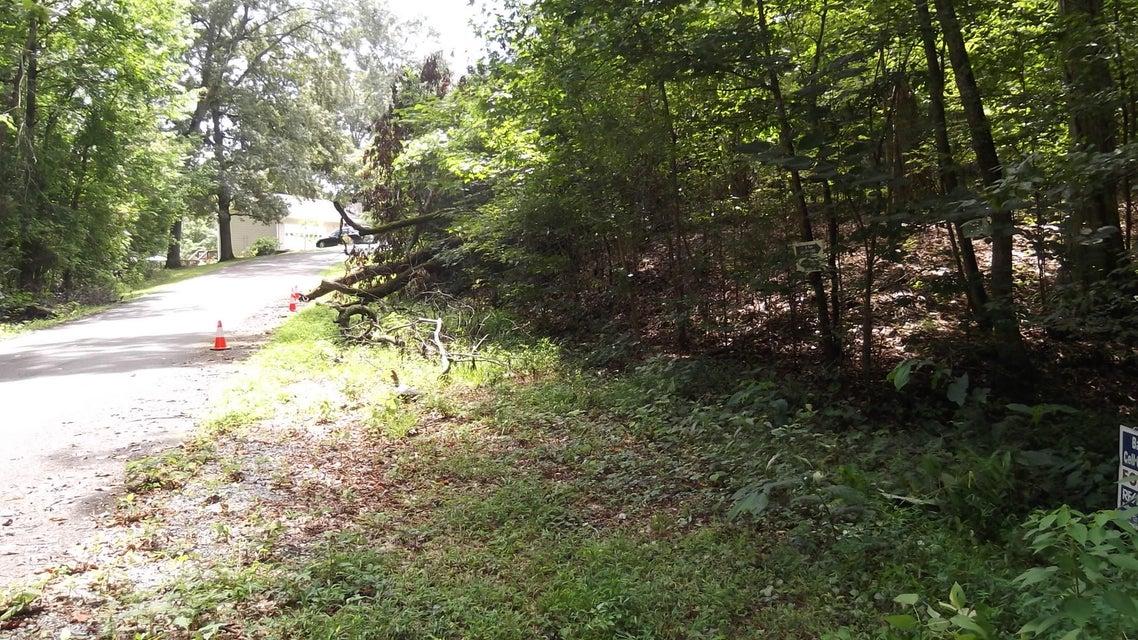 Additional photo for property listing at Deer Creek Tr Deer Creek Tr Baneberry, Tennessee 37890 Estados Unidos