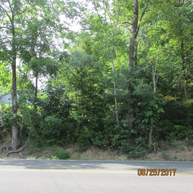 Additional photo for property listing at Waldens Creek Road Waldens Creek Road Sevierville, Tennessee 37876 États-Unis