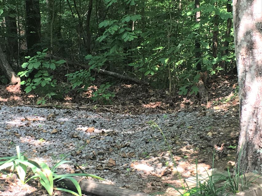 Additional photo for property listing at Hickory Star Road Road Hickory Star Road Road Maynardville, 田纳西州 37807 美国